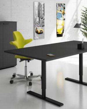 Holmris Q10 Desk